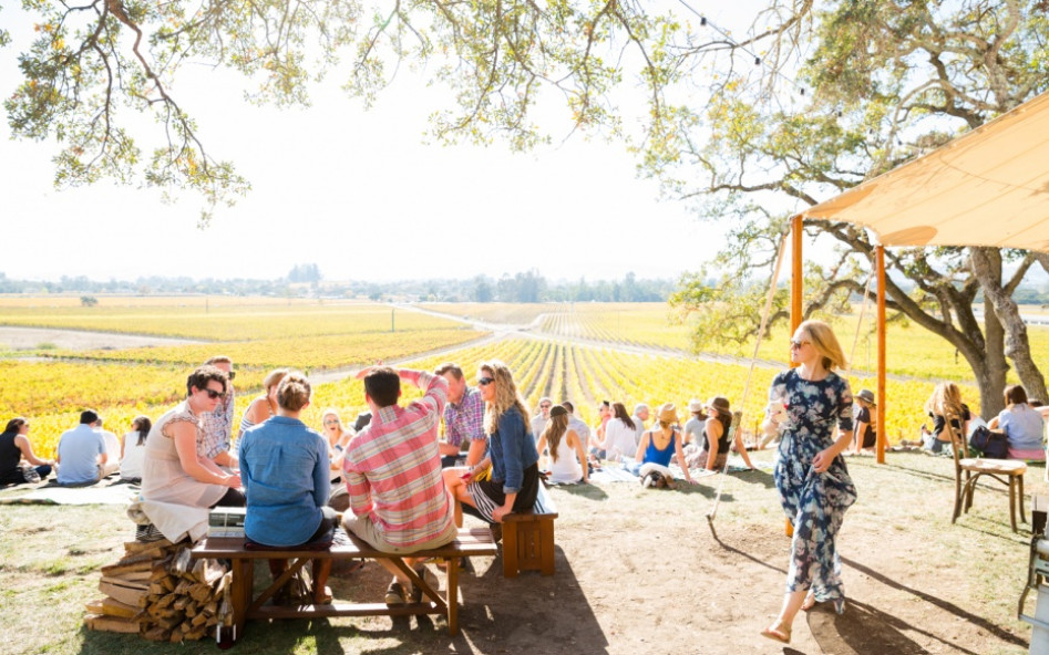 A Guide to Sonoma Winery