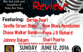 We Won't Forget Blues Review Donates to Charity